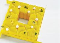 Форма для муссовых тортов KE037 SQUARE