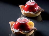 Форма силиконовая для десертов FF08