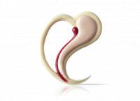 Декоративное украшение из натурального шоколада 77065 Сладкое сердце
